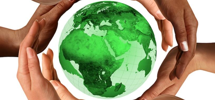 standardize-sustainability.jpg