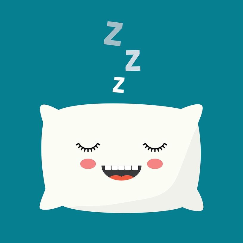 Pillow cartoon_815x.jpg